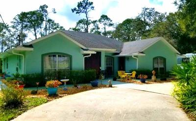 Deland Single Family Home For Sale: 4270 Marsh Road