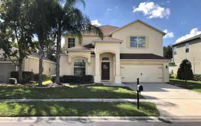 Wesley Chapel Single Family Home For Sale: 4224 Wildstar Circle