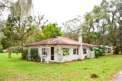 Deland Single Family Home For Sale: 1694 W Euclid Avenue