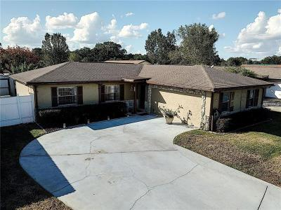 Kissimmee Single Family Home For Sale: 2558 Mill Run Blvd