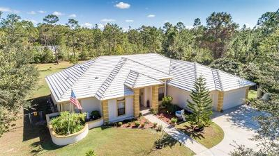 Orlando Single Family Home For Sale: 2113 Coronet Court