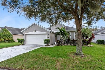 Orlando Single Family Home For Sale: 3821 Andover Cay Boulevard