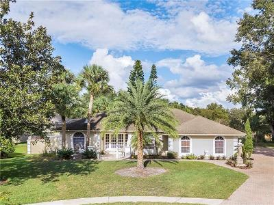 Orlando Single Family Home For Sale: 6203 Wynfield Court