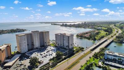 St Petersburg Condo For Sale: 5220 Brittany Drive S #1309