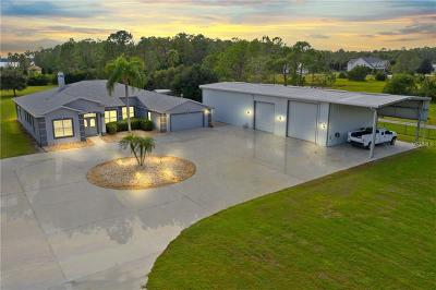 Saint Cloud FL Single Family Home For Sale: $749,900