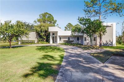 Eustis Single Family Home For Sale: 1565 Lakeview Road
