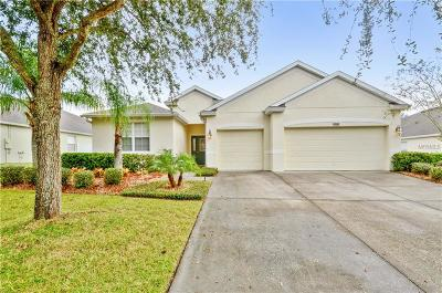 Mount Dora Single Family Home For Sale: 5271 Rishley Run Way