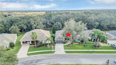 Lake County, Marion County Single Family Home For Sale: 4344 Antietam Creek Trail