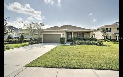 Ormond Beach Single Family Home For Sale: 44 Levee Lane