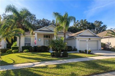 Leesburg Single Family Home For Sale: 25003 Laurel Valley Road