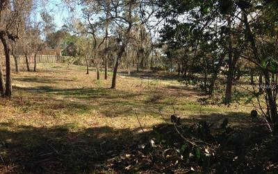 Tarpon Springs Residential Lots & Land For Sale: Belcher Drive