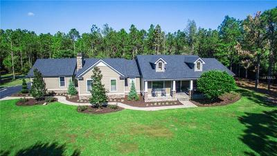 Lake County, Sumter County Single Family Home For Sale: 10131 Fox Meadow Trail