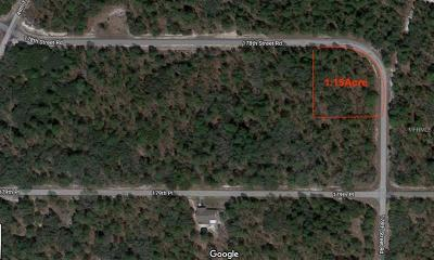Marion County Residential Lots & Land For Sale: SW 178th Street SW 178th Street Road