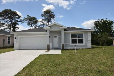 Volusia County Single Family Home For Sale: 226 Haversham Road