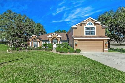 Clermont Single Family Home For Sale: 8711 Spyglass Loop