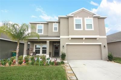 Kissimmee Single Family Home For Sale: 2504 Egret Loop