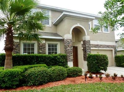 Debary Single Family Home For Sale: 521 Doverton Lane