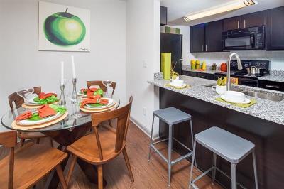 Lutz Rental For Rent: 15410 Livingston Avenue #312
