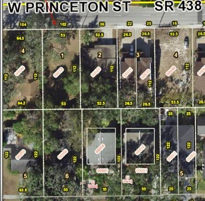 College Park Residential Lots & Land For Sale: 102 W Princeton Street