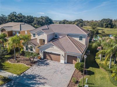 Kissimmee Single Family Home For Sale: 3738 Eagle Isle Circle
