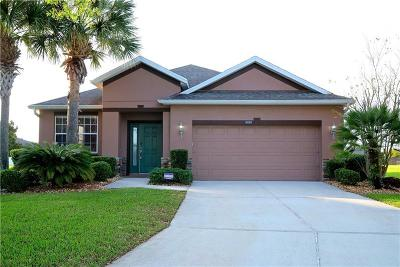 Mount Dora Single Family Home For Sale: 5929 Rutherford Road