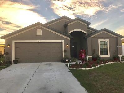 Deland  Single Family Home For Sale: 3410 Wild Ocelot Court