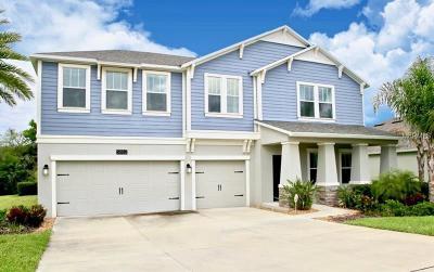 Mount Dora Single Family Home For Sale: 5882 Alenlon Way