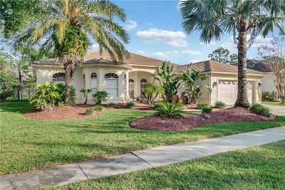 Orlando, Windermere, Winter Garden, Clermont, Golden Oak, Reunion, Champions Gate, Celebration, Lake Buena Vista, Davenport, Haines City Single Family Home For Sale: 2613 Teton Stone Run