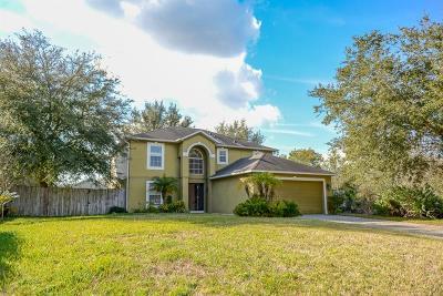 Deltona Single Family Home For Sale: 2876 Monarch Avenue