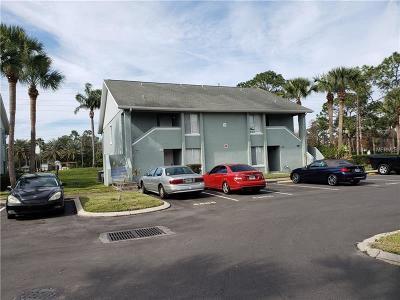 Orlando Condo For Sale: 4404 White Pine Avenue #70-2