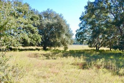 Levy County Residential Lots & Land For Sale: 0 SE County Rd 337 Road