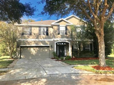 New Port Richey, New Port Richie Single Family Home For Sale: 11705 Colony Lakes Boulevard
