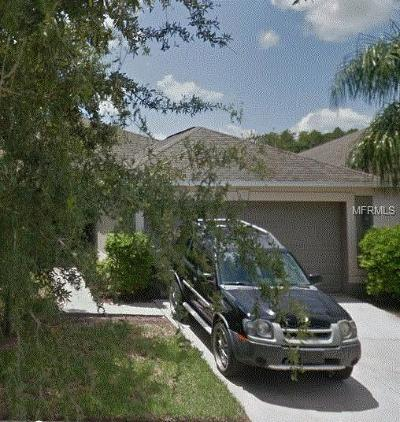 Ruskin Single Family Home For Sale: 7503 Turtle View Drive