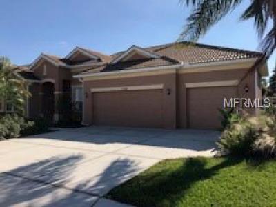 Sarasota Single Family Home For Sale: 7786 Arolla Pine Boulevard