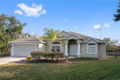 Deltona Single Family Home For Sale: 2431 Vicki Court