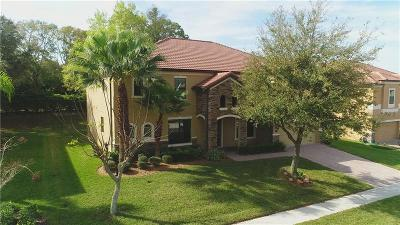 Apopka Single Family Home For Sale: 2914 Falconhill Drive