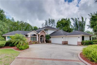 Tarpon Springs Single Family Home For Sale: 2866 Post Rock Drive