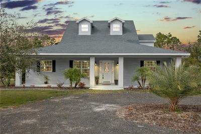Deland Single Family Home For Sale: 312 Padrick Avenue