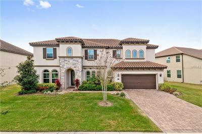 Orlando Single Family Home For Sale: 8458 Chilton Drive