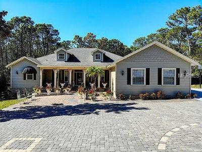 Clermont, Kissimmee, Orlando, Windermere, Winter Garden, Davenport Single Family Home For Sale: 5868 Lakeville Road