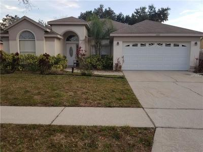 Clermont, Kissimmee, Orlando, Windermere, Winter Garden, Davenport Single Family Home For Sale: 1039 Sweetbrook Way