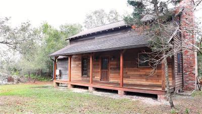 Deland Single Family Home For Sale: 42328 Dogwood Avenue