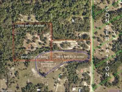 Eustis Residential Lots & Land For Sale: 39019 Swift Road
