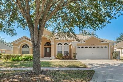 Clermont Single Family Home For Sale: 16147 Egret Hill Street