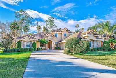 Sanford Single Family Home For Sale: 784 Summer Palm Court
