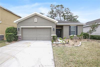 Riverview Single Family Home For Sale: 8511 Tidal Breeze Drive