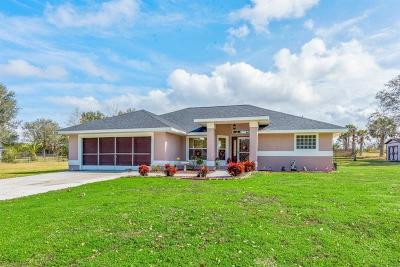 Clermont FL Single Family Home For Sale: $365,000