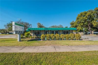 Winter Haven Commercial For Sale: 1495 6th Street SE
