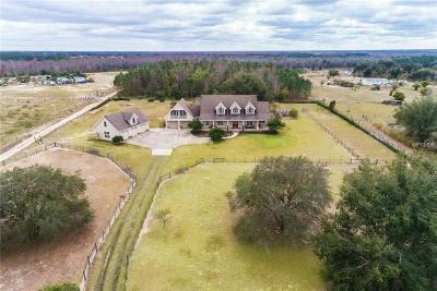 Clermont Single Family Home For Sale: 7909 Lake Nellie Road