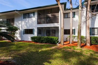 Palm Harbor Condo For Auction: 3277 Fox Chase Circle N #106